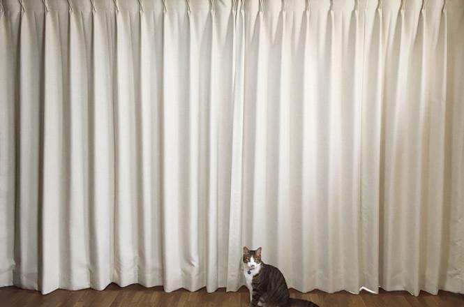 お気に入りのカーテンをみつけませんか♪