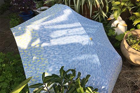 折畳傘 晴雨兼用 レイクフォレストII ライトブルー